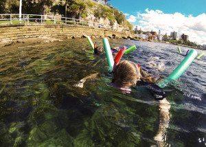 Snorkeling, Sydney tours
