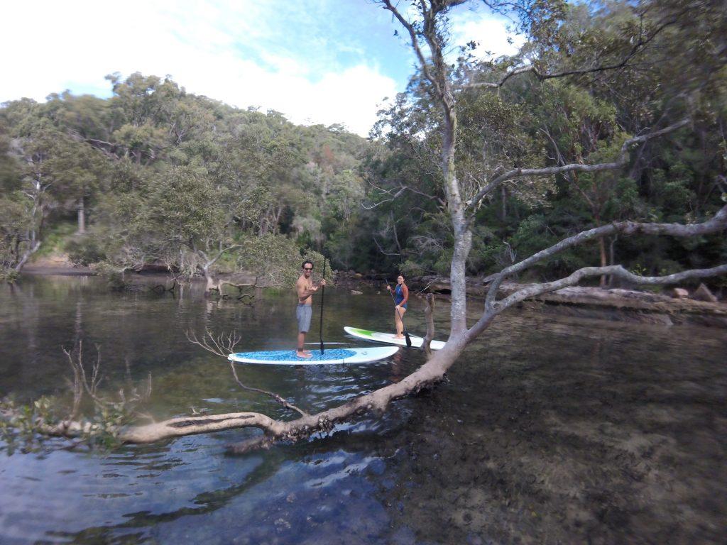 Basin SUP Safari