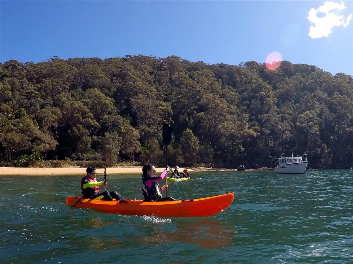 EcoTreasures Northern Beaches Sydney kayaking tours