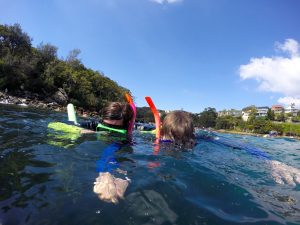 Manly snorkel adventure