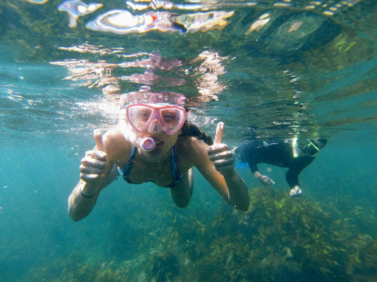 Manly Snorkeling Tour