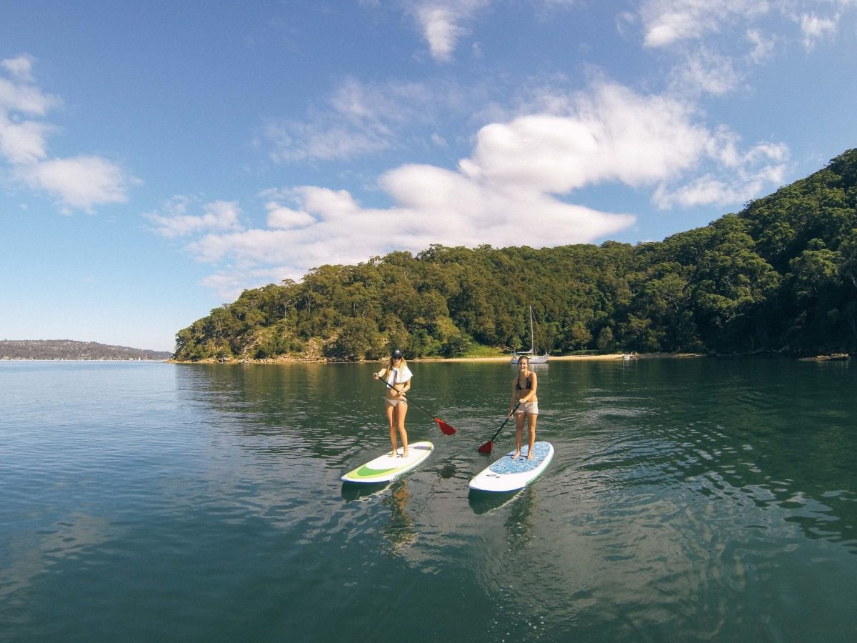 Paddle boarding sydney pittwater