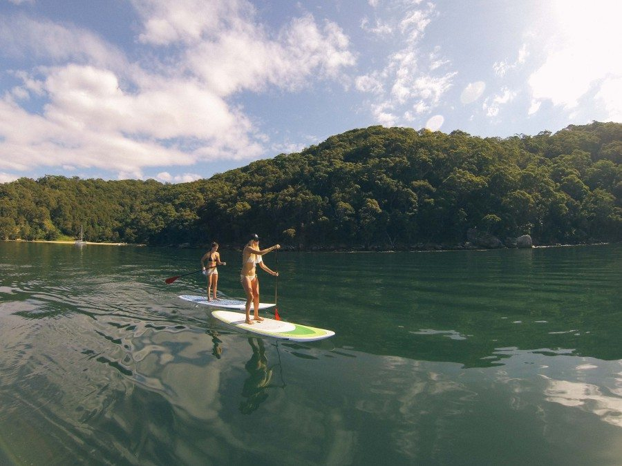Pittwater Paddle Board (SUP) Safari
