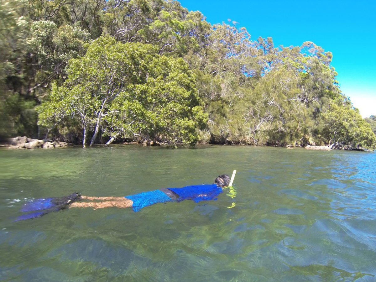 Snorkeling Pittwater the Basin campground