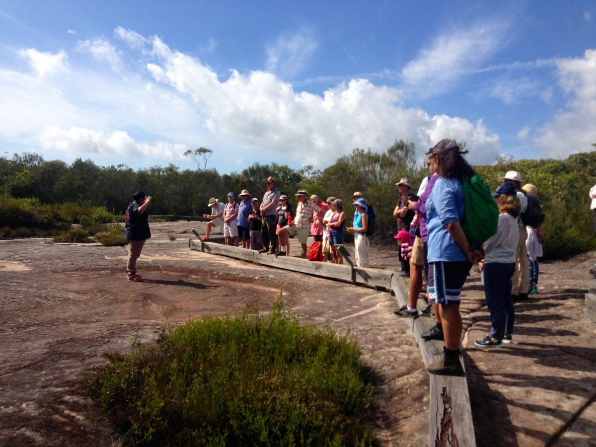 Indigenous guided tours ecotreasures