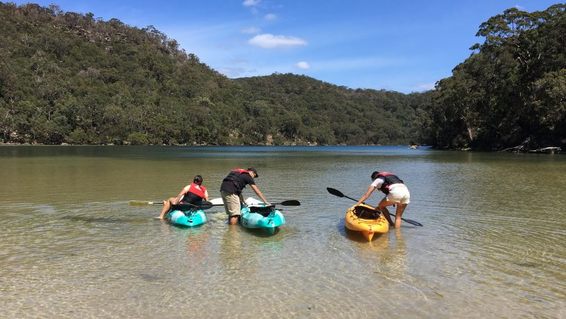 Sydney to Ku-ring-gai Wildlife Adventure Tour