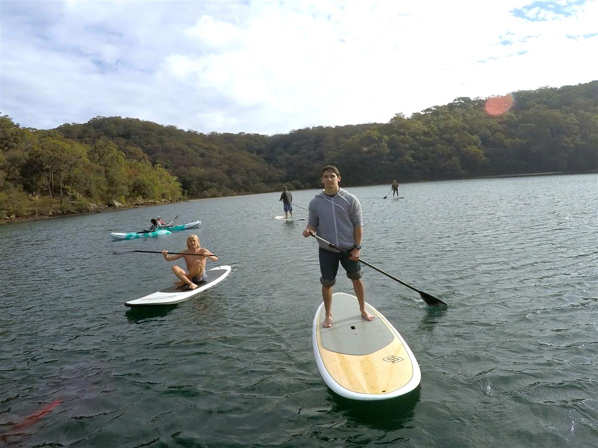Sydney to Ku-ring-gai Wildlife Adventure