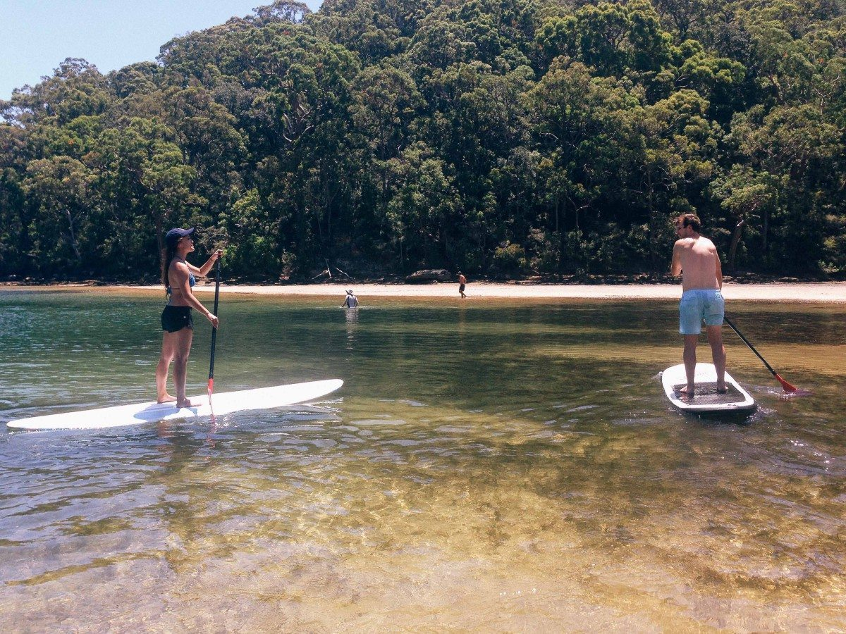 Sydney Paddle Boarding (SUP) Tours