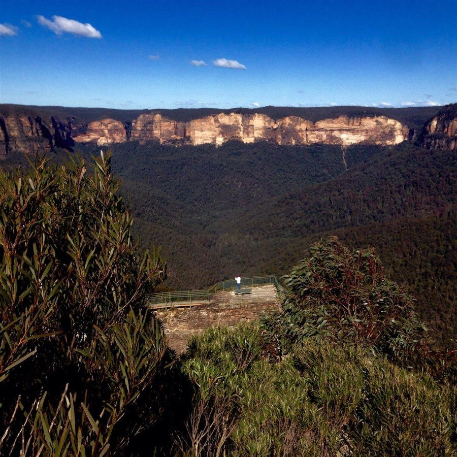 EcoTreasures Blue Mountains Tour Grose Valley private touring