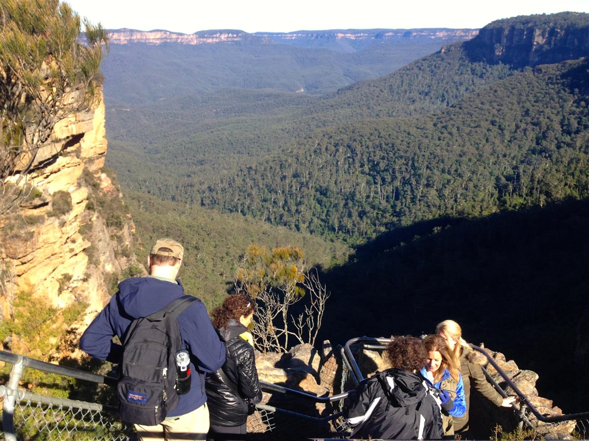 Private Blue Mountains Eco Tour