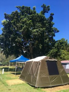 Basin campground campsite set up ecotreasures