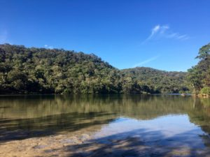 Paddle board and kayak hire basin pittwater