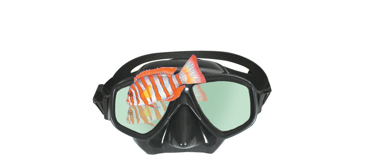 Snorkel mask-clearwater-black-mirror-mask