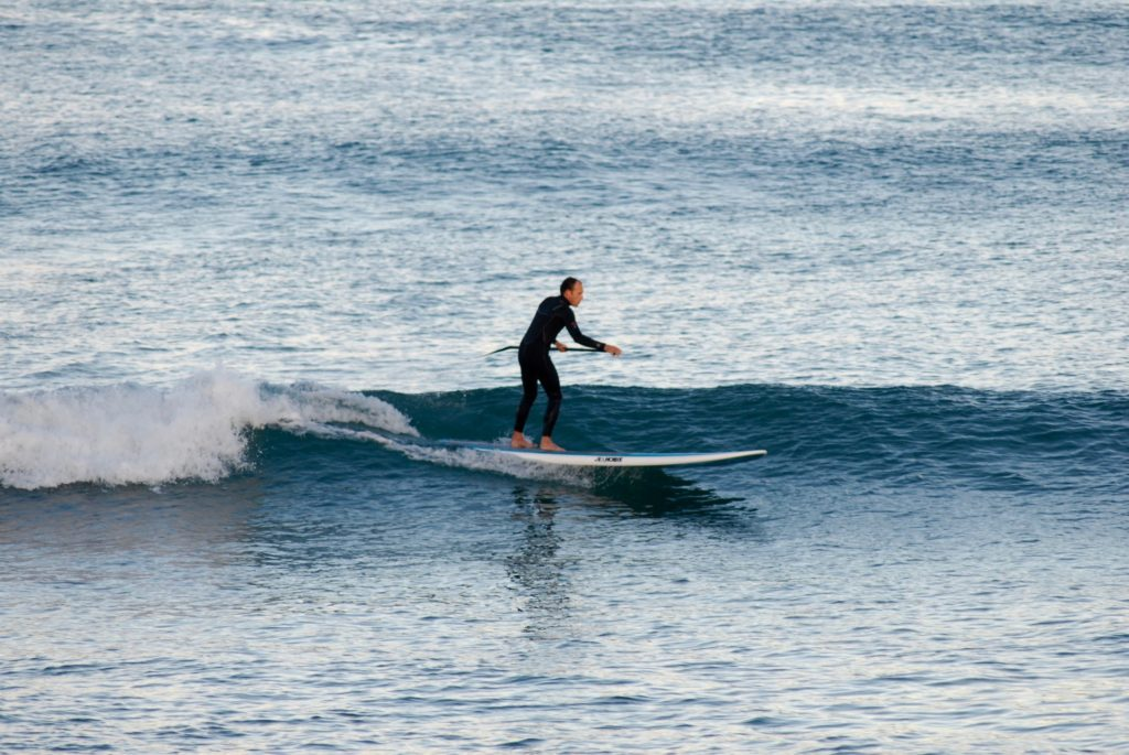 Mobile Sydney Paddle Boarding Lesson and Tours