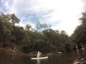 Paddle boarding Sydney
