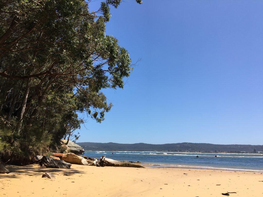 Sydney nature tours