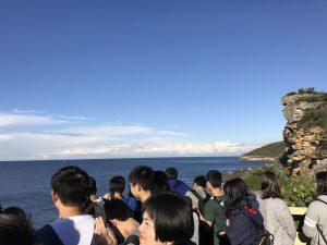 Manly coastal walking tour study tours ecotreasures