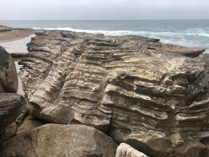 Sandstone coastline Sydney's northern beaches