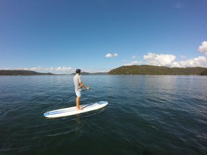 Paddle boarding Pittwater ecotreasures