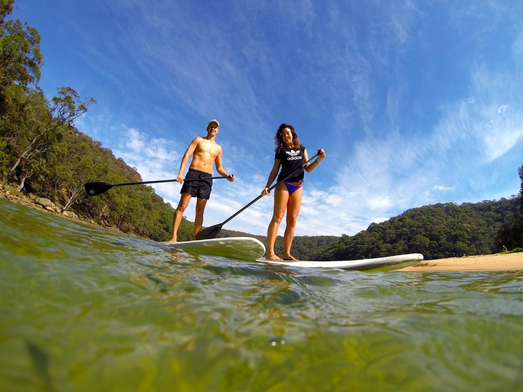 Paddle boarding tour sydney ecotreasures