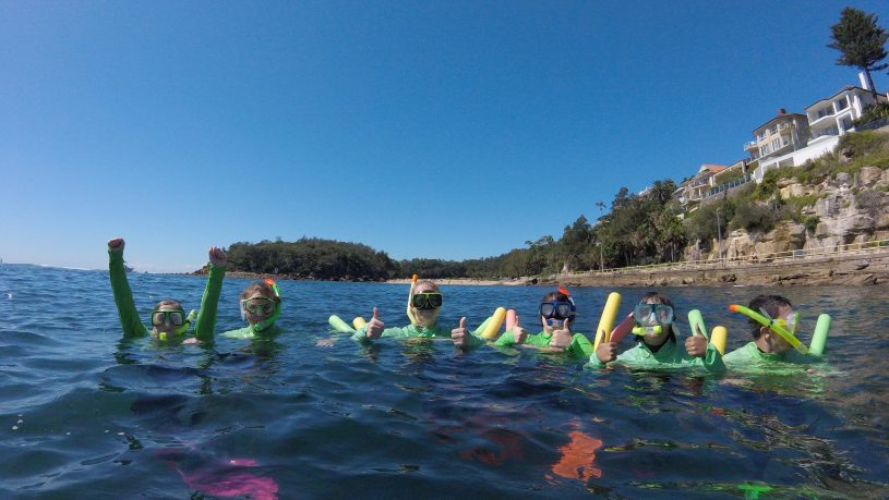 Manly snorkel tour + beyond manly half day adventure