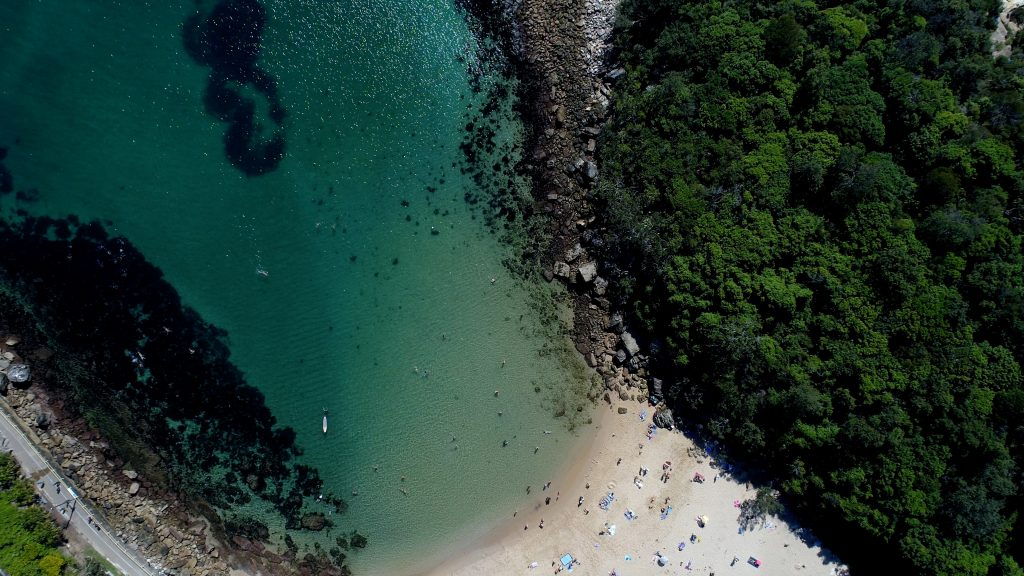 Manly Paddle Board (SUP) and Snorkel Tour